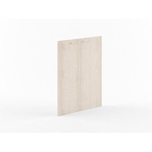 Дверь Xten XMD42-2